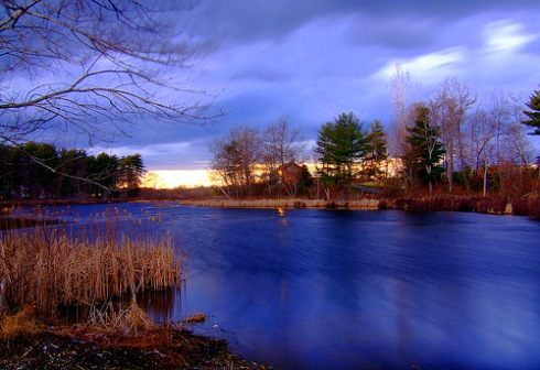 Esops' photo of Forge Pond