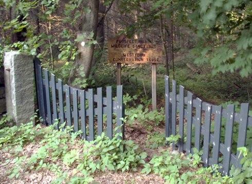 Prospect Hill Gate