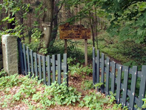 Prospect Hill Gate Take 2